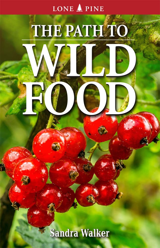 Path to Wild Food, The